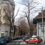 București: Ofertă angajare medic de familie și medic specialist medicina muncii