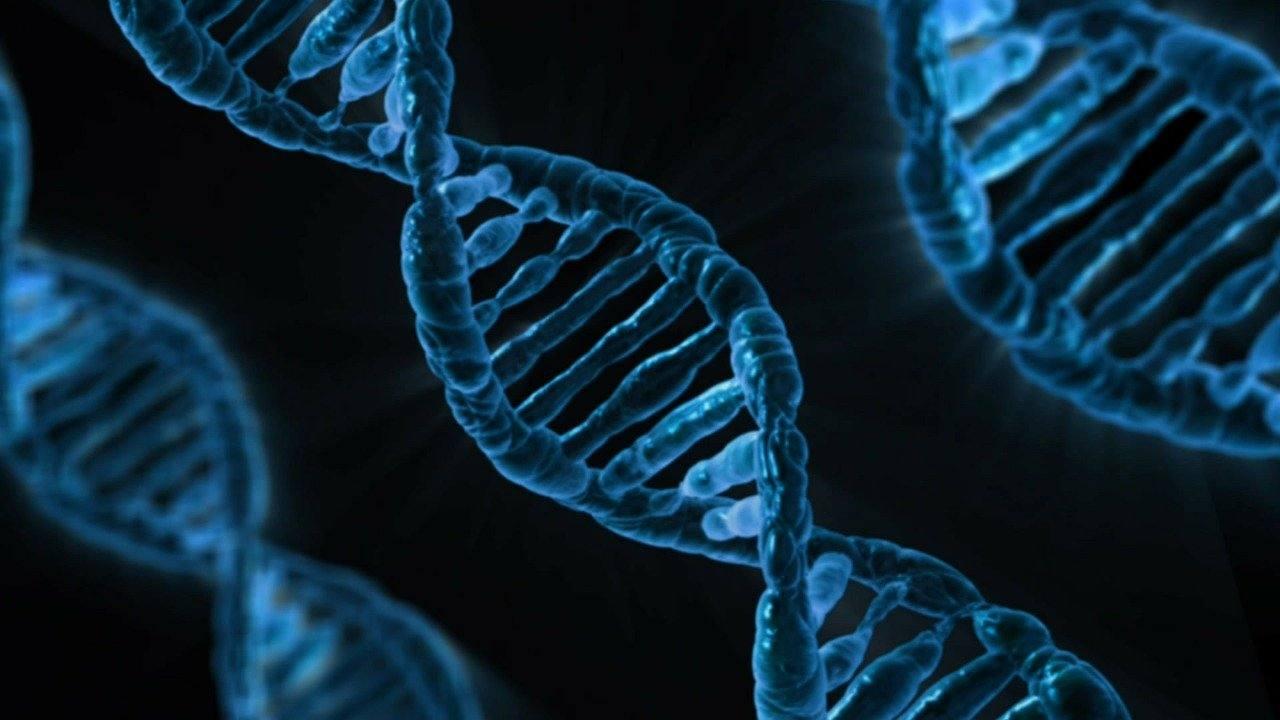 """Prof. dr. Vasile Astărăstoae: """"Visul eugenic"""" și discriminarea genetică"""
